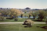 Ottawa Arboretum.jpg