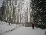 Skiing Broken Trail
