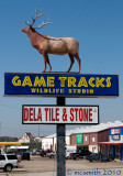 Game Tracks Wildlife Studio