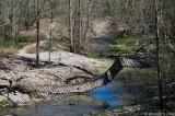 Suspension bridge destroyed