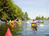 sea_kayak_ballard_locks