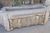 Palmyra apr 2009 9959.jpg