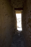 Palmyra apr 2009 9994.jpg
