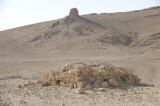 Palmyra apr 2009 0016.jpg