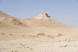 Palmyra apr 2009 0017.jpg