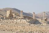 Palmyra apr 2009 0048.jpg