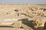 Palmyra apr 2009 0060.jpg