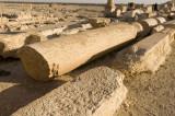 Palmyra apr 2009 0062.jpg