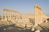 Palmyra apr 2009 0099.jpg