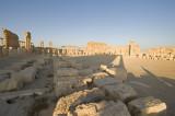 Palmyra apr 2009 0113.jpg