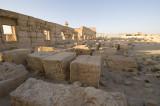 Palmyra apr 2009 0116.jpg