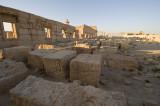 Palmyra apr 2009 0117.jpg