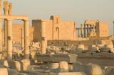 Palmyra apr 2009 0125.jpg