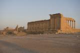 Palmyra apr 2009 0139.jpg
