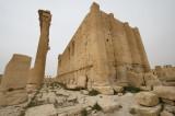 Palmyra apr 2009 0239.jpg