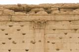 Palmyra apr 2009 0289.jpg
