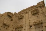 Palmyra apr 2009 0294.jpg