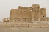 Palmyra apr 2009 0298.jpg