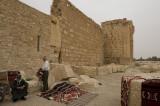 Palmyra apr 2009 0306.jpg