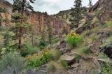 whychus creek canyon