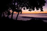 1st sunrise on the Osa Peninsula - Matapalo.jpg