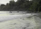 CDR beach high tide II.jpg