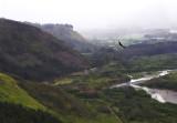 Entering Orosi Valley from Paraiso.jpg