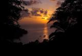Mango Moon sunset.jpg