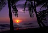 Playa Dominicalito sunset.jpg