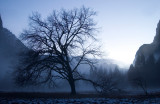 Yosemite '01-'04
