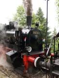 Train 1900 - 013