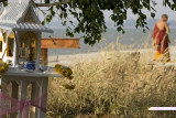 Spirit House and novice-Pattaya