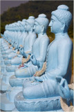 Blue Buddhas-Pattaya