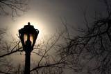 Morning Lamp Light