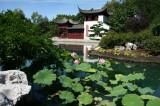 Jardin-de-Chine_IMG_2227_