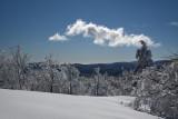 Mont Aigoual View