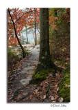 Rim Trail, Conkles Hollow