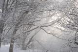 Birmingham in Snow