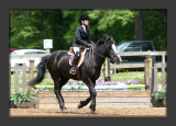 Picking Up Speed