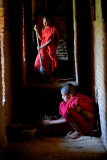 Bagan area
