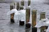 Ice bells, River Gudenaaen 01