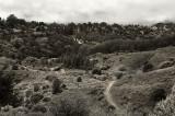 Nimitz trail.jpg