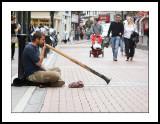 Didgeridooist