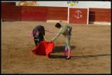 Bullfight-001