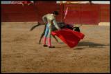 Bullfight-002