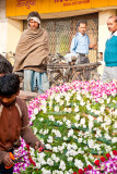20100213_delhi-4.jpg