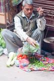 20100213_delhi-43.jpg
