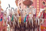 20100213_delhi-106.jpg