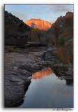 Sunrise Reflection in Zion