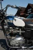 The Triumph_DSC3487-copy.jpg